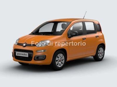 usata Fiat Panda PANDA1.2 69 Cv POP