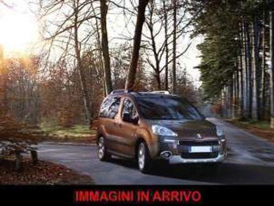 usata Peugeot Partner Tepee 1.6 HDi 92CV 4X4 Active Endurance