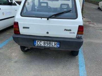 usata Fiat Panda 1100 i.e. cat Young