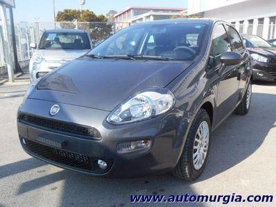 usata Fiat Punto 1.2 8V 5porte Street Radio con 5° posto KM0 rif. 7441791