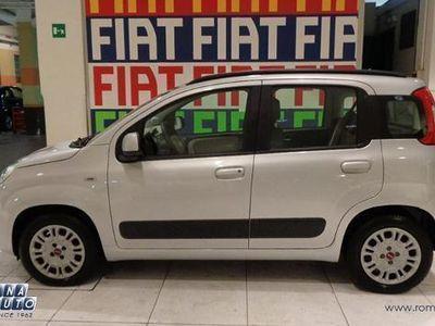 usata Fiat Panda New1.2 Lounge 69 cv Euro 6 Aziendale !
