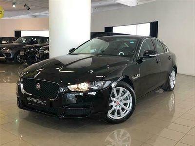 usata Jaguar XE 2.0 D 180 CV aut. Prestige del 2018 usata a Pesaro