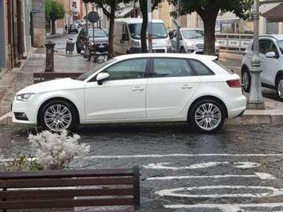 usata Audi A3 SPB 1.6 TDI clean diesel Business