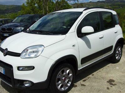 usata Fiat Panda 4x4 1.3 MJT 75CV