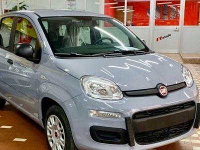 usata Fiat Panda New