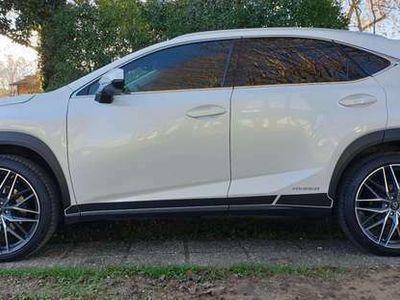 usata Lexus NX300 Executive 4WD CVT AUT. HYBRID