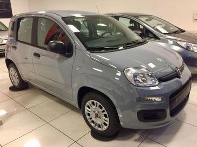 usata Fiat Panda 1.2 Easy 69CV - KM0 ADATTA NEOPATENTATI
