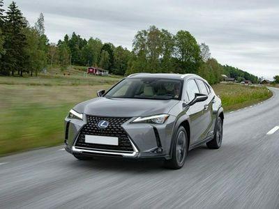 usata Lexus UX 250h Hybrid CVT Business
