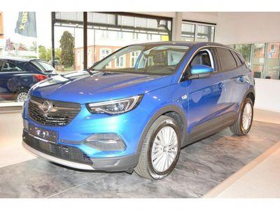 gebraucht Opel Grandland X X Dynamic Automatik Autom.parkassistent Navi