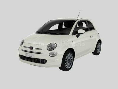 usata Fiat 500 Serie 7 1.2 69 Cv Lounge Euro 6d-Temp - Stock