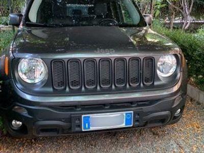 usata Jeep Renegade Trailhawk 2.0 170 Cv