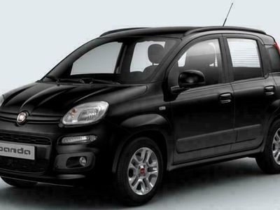 usata Fiat Panda panda1.2 km zero tasso zero