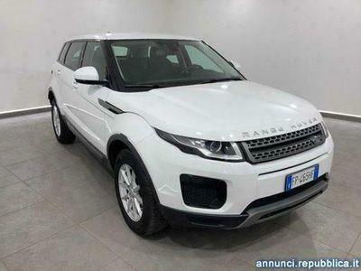 usata Land Rover Range Rover 2.0 eD4 5p. Business Premium Pure AUTO Curti