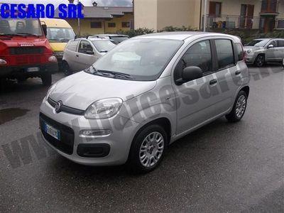 usata Fiat Panda New1.2 69cv EASY