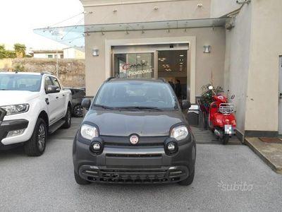 usado Fiat Panda Cross New City - 1.2 69CV Euro 6 4X2