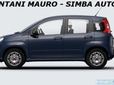 usata Fiat Panda 1.0 FireFly Hybrid Easy Modena
