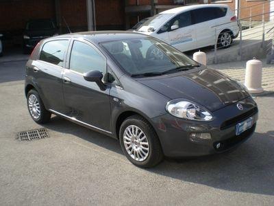 usata Fiat Punto 1.2 8V 5 porte Street KM ZERO UFFICIALE ITALIANA!