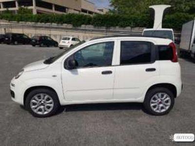 usata Fiat Panda NewDue Volumi Benzina
