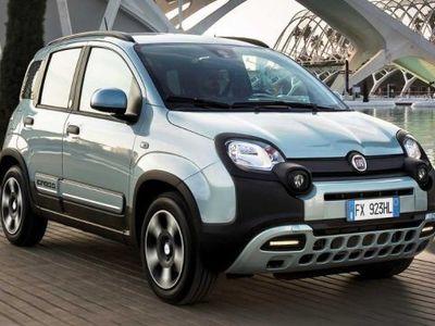 usata Fiat Panda 1.0 FireFly S&S Hybrid Launch Edition