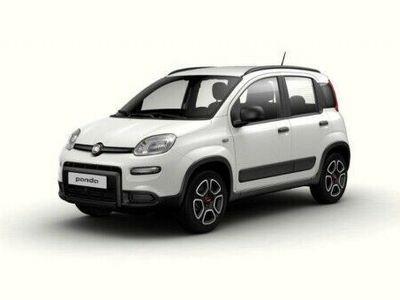 usata Fiat Panda Panda III 20211.0 hybrid City Life s&s 70cv