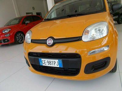 usata Fiat Panda 1.0 FireFly S&S Hybrid Easy 338.7575187 MASSARI MARCO