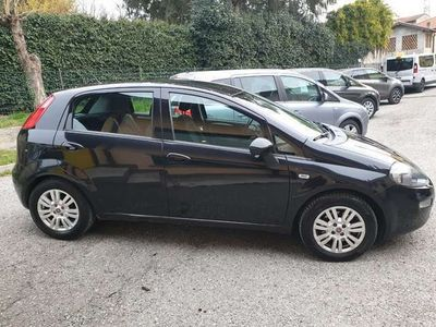 usata Fiat Punto Evo 1.3 MJT II 95 cv Lounge Euro 6 Blu & Me !
