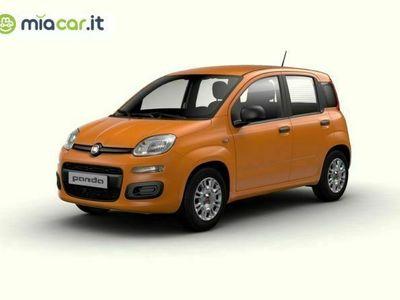 usata Fiat Panda 1.0 hybrid s&s 70cv