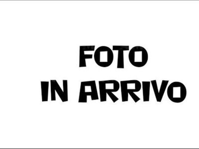 usata Seat Ibiza 1.0 EcoTSI 95 CV 5p. XCELLENCE nuova a Venezia