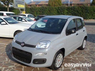 usado Fiat Panda 1.2 easy benzina