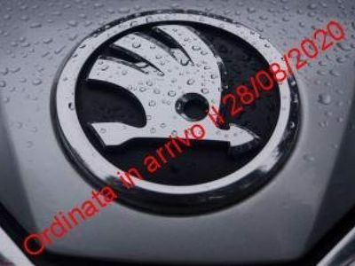 usata Skoda Kamiq 1.0 TSI 115 CV Ambition