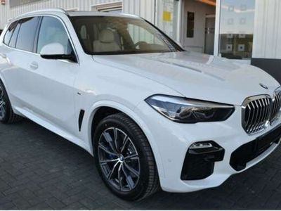 usata BMW X5 xDrive30d Business