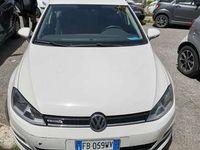usata VW Golf 1.4 TGI 5p. Highline BlueMotion