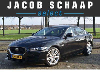 tweedehands Jaguar XE 2.0 D Prestige Pro Edition Automaat Schuifdak / Adapt. Cruise control / Dodehoek