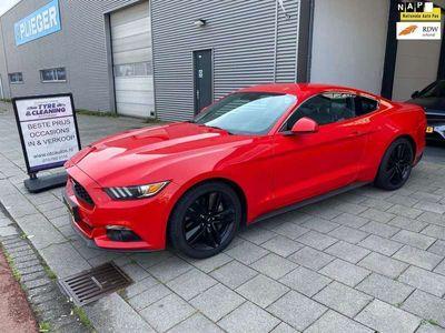 tweedehands Ford Mustang Fastback 2.3 EcoBoost nav/leer/aut/premium/alarm