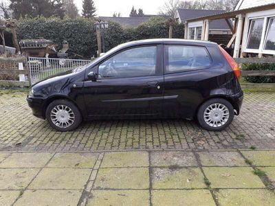 tweedehands Fiat Punto 1.2-16V ELX