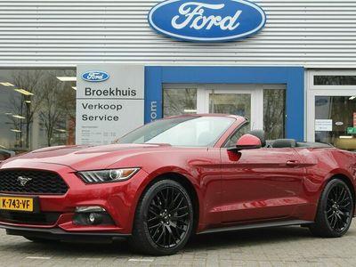 tweedehands Ford Custom MUSTANG CONVERTIBLE 2.3EB 317PK AUTOMAAT   SPORT UITL  PACK   STOELKOELING + VERW   SCHAKELFLIPPERS