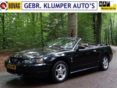 tweedehands Ford Mustang 3.8 V6 Cabrio Aut, Leer, Airco, Cruise, NL-Auto!!