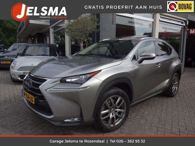 tweedehands Lexus NX300h AWD Luxury Line