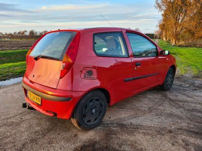 tweedehands Fiat Punto 1.2 Active