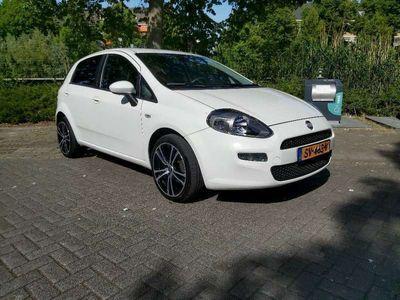 tweedehands Fiat Punto 1.2 Pop