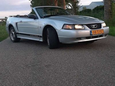 tweedehands Ford Mustang 3.8 V6 Convertible