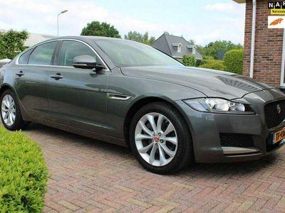 tweedehands Jaguar XF 2.0d Prestige 180 PK | Automaat | Bi-Xenon | Leder