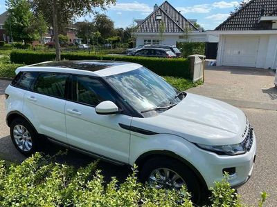tweedehands Land Rover Range Rover evoque 2.2 eD4 2WD Pure Business Edition