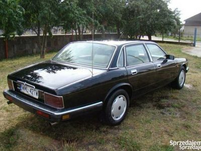 używany Jaguar XJ40 3.2 stan kolekcjonerski
