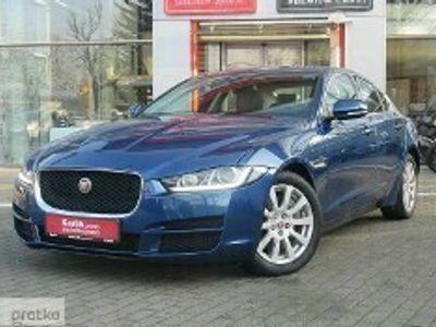 używany Jaguar XE XE I Dealer Karlik Poznań Malta2.0 Prestige Salon PL