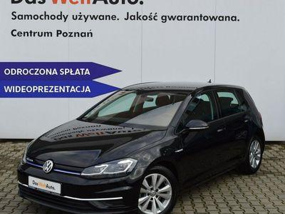 używany VW Golf VII 1.5dm 130KM 2019r. 14 274km
