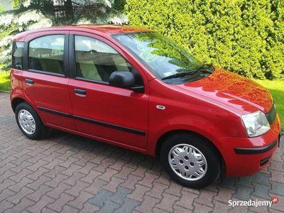 używany Fiat Panda - 1.2, ładna i zadbana, krajowa, stan bdb