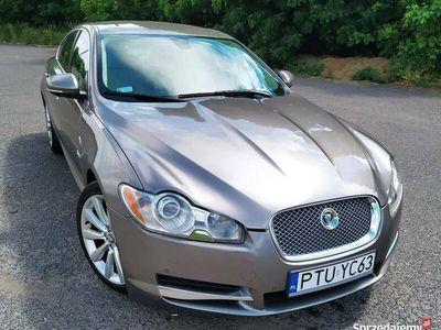 używany Jaguar XF 3.0 Diesel