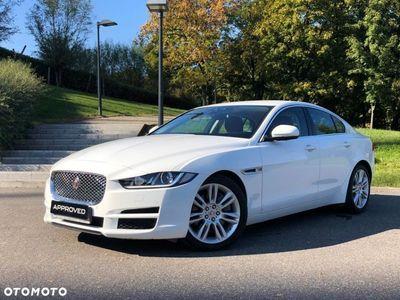 używany Jaguar XE