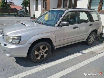 używany Subaru Forester XT 177 KM
